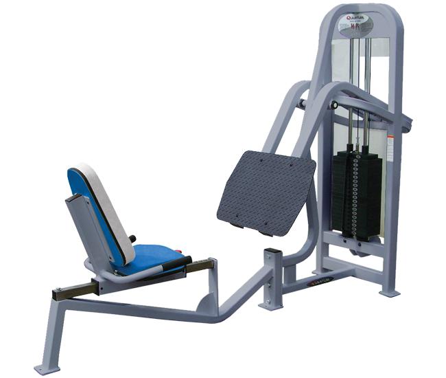Quantum Seated Leg Press